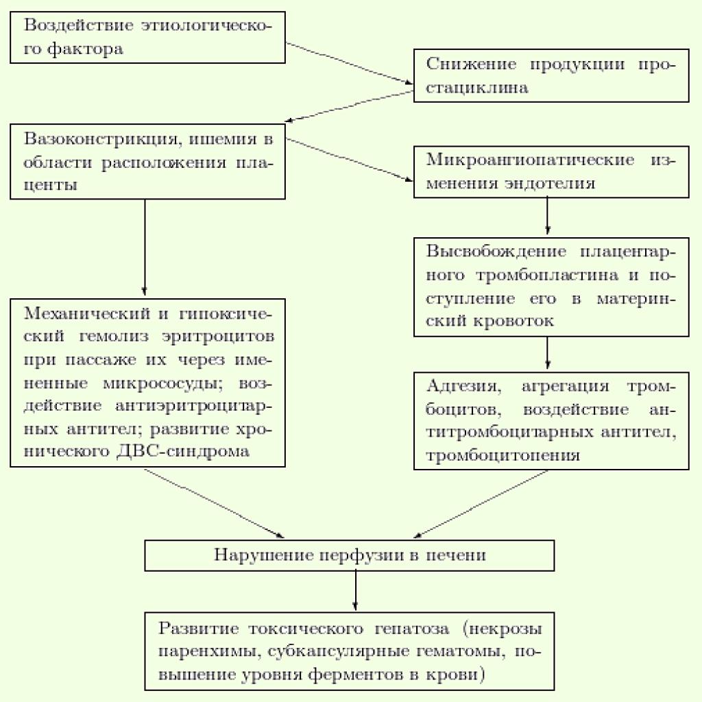 Краш синдром патогенез схема