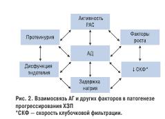 Рис. 2. Взаимосвязь АГ и других факторов в патогенезе прогрессирования ХЗП