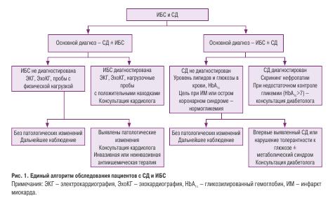 Единый алгоритм обследования пациентов с СД и ИБС