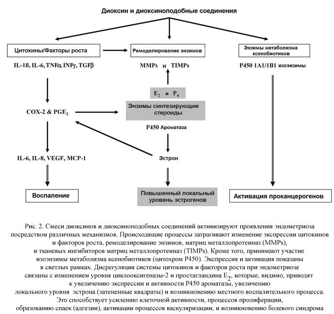 Диоксин и диоксиновые соединения
