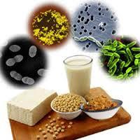 Терапия пробиотиками