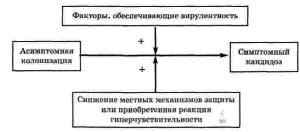 Патогенез кандидоза