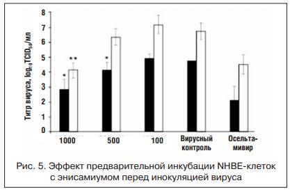 Эффект предварительной инкубации NHBE-клеток