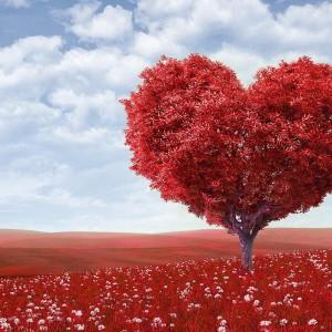 Ученые вырастили функционирующую сердечную ткань