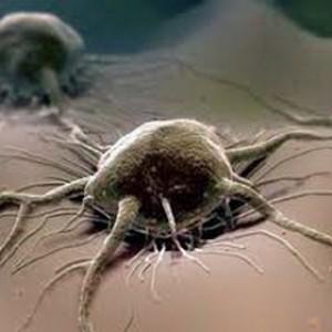Эффективная диагностика рака: Онкомаркеры