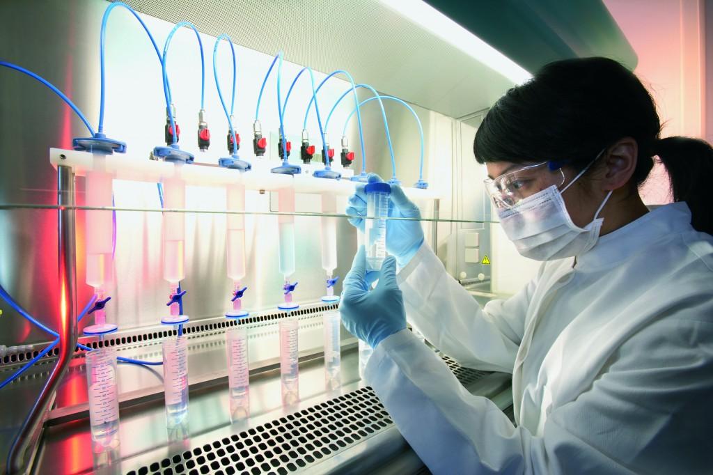 Группе ученых из Университета Эдинбурга удалось вырастить почку в лаборатории, благодаря экспериментам со стволовыми клетками