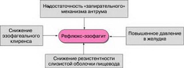 Патогенез гастроэзофагеальной рефлюксной болезни