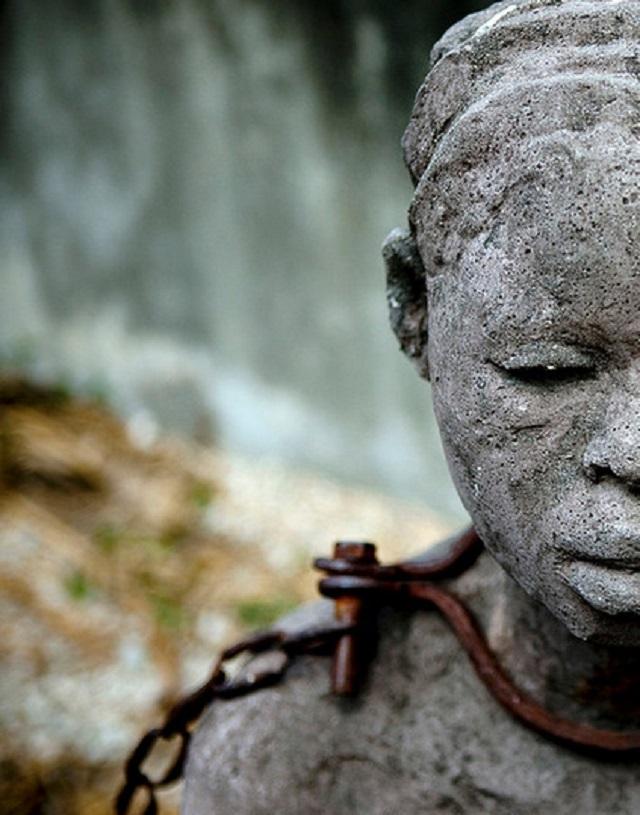 День борьбы за отмену рабства, медпросвита