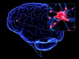 Дисциркуляторная энцефалопатия – Часть 2