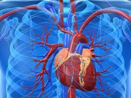 ESC 2016: Симптомы и признаки сердечной недостаточности