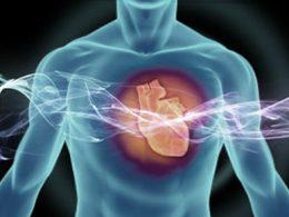 ESC 2016: Дополнительные методы визуализации сердца и другие диагностические тесты