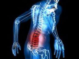 Боль в пояснице: может это болят почки? Симптомы заболеваний почек