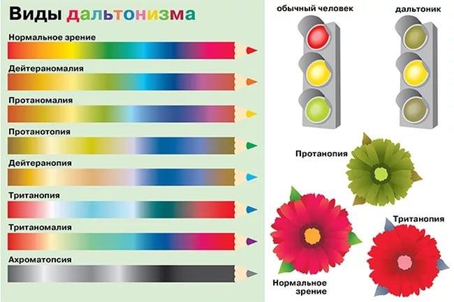 народной определение всех цветов на картинке вкусные