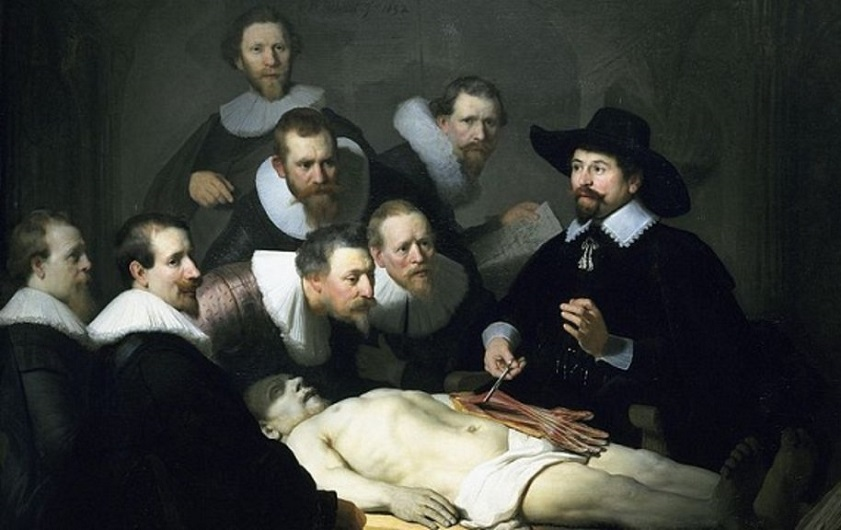 урок анатомии, хирургия, медпросвита